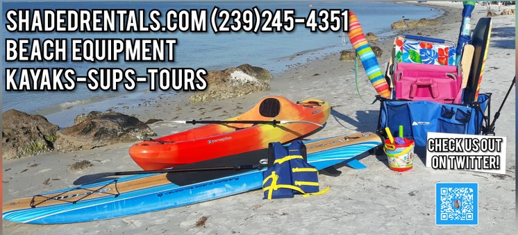 Beach Equipment Rentals